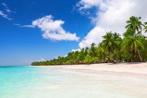 Palm Beach Saona