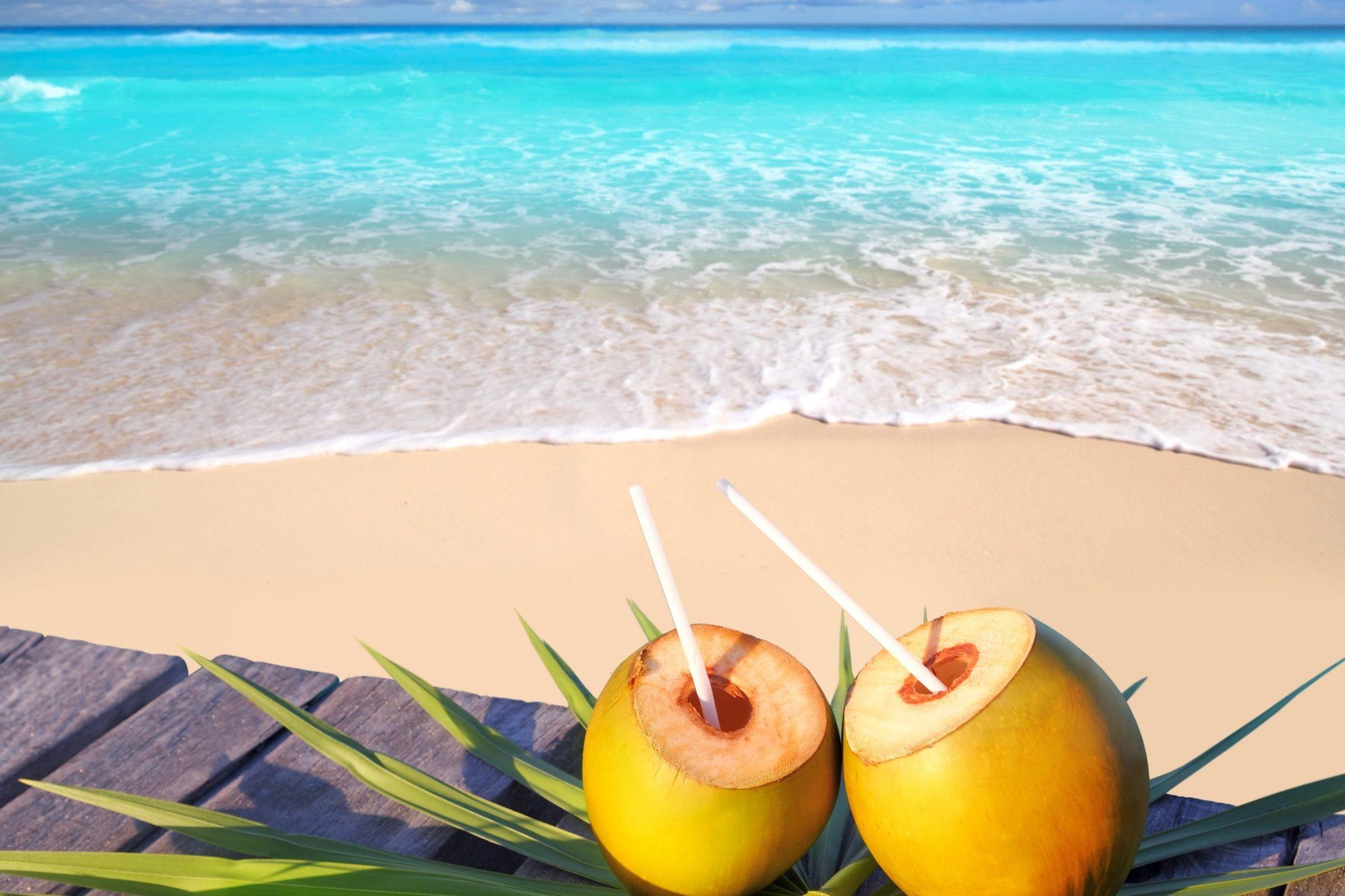 Saona Island Coconut Water